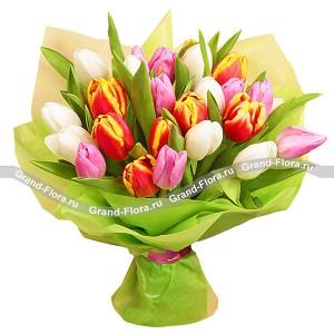 Заказ цветов в реховоте израиль, букет к 23 февраля из рыбы и пива